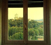 Glimpse V von Katia Zaccaria-Cowan