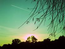 herbsthimmel. von chaunceyphotography