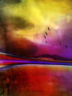 Landschaft-mit-voegeln-2