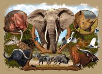 Africa 1 by Fernando Ferreiro
