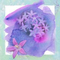 A Splash of Purple von Betty LaRue