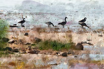 Canada Geese by the Lake by Betty LaRue
