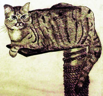 Pussycat by aidao