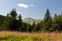 Ilgaz Mountains by Evren Kalinbacak