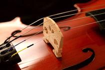 Geige von aidao