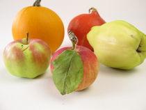 Quitte, Apfel und Kürbis von Heike Rau