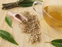 Tee mit Weidenrinde by Heike Rau