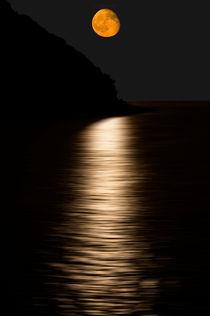 Luna da Toscana von Anna Katharina Rowedder