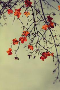 Autumn von Diana Kraleva