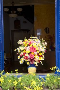 Colourful flower display by Steve Outram