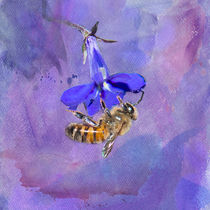 Surrounded by Purple by Betty LaRue