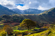 Swirl How, Lake District von Craig Joiner