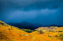 Rainstorm over Langdale Pikes von Craig Joiner
