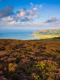 Porlock Bay, Exmoor, England by Craig Joiner