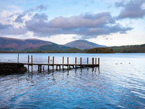 Jetty at Victora Bay on Derwent Water von Craig Joiner