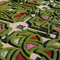 Garten der Liebe von Martin Arnold
