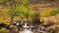 Nant Gwynant Waterfalls II by Maciej Markiewicz