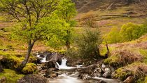 Nant Gwynant Waterfalls II von Maciej Markiewicz