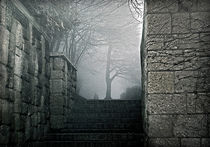 A foggy stairway by Leopold Brix