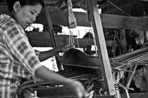 Burmese woman working with a handloom weaving. von RicardMN Photography