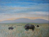 Büffel by Rainer Pfannkuch