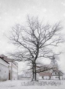 Wintertag von Franziska Rullert