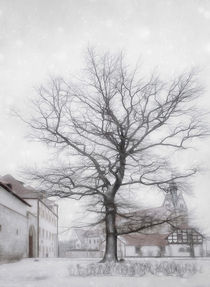 Wintertagdave