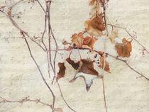 Wintersinfonie von Franziska Rullert
