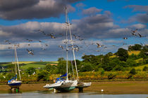 Beached boats on the River Avon, Devon by Louise Heusinkveld