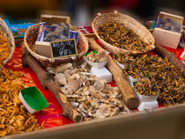 Wild Mushrooms for Sale by Louise Heusinkveld