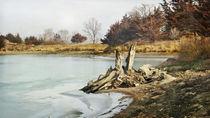 Frozen Lake by Tina  Lindsay