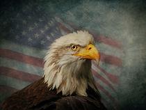 America by Tina  Lindsay