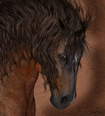 Horse Portrait by Tanya  Hall