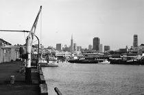 San Francisco skyline by Bogdan Grigorescu