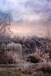 winter wonderland von Dawn Cox