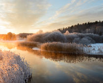 Winter morning by Mikael Svensson