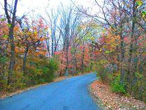 Beautiful Autumn Afternoon Day Drive von skyler