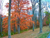 Butler State Park in Kentucky von skyler