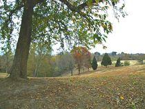 Kentucky Rural Area by skyler
