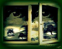 'Looking for open windows' von Vera Markgraf