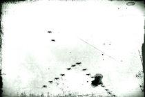 flugs Flügel flatter by Bastian  Kienitz