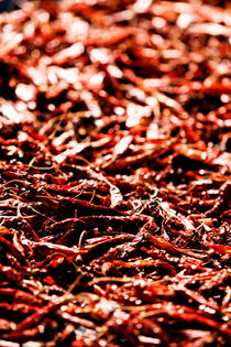 Sun-Dried Chillies. von Tom Hanslien