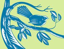 New Zealand fantail bird retro von patrimonio