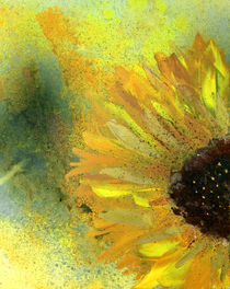 Helianthus | Detail II by Kerstin Kell