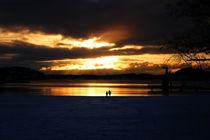 Poised Sunset von Dwanian Photo