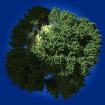 GREEN EARTH - GRÜNE ERDE - 3D-ART von Anil Kohli