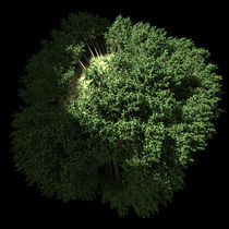 GREEN PLANET- GRÜNE PLANET - 3D-ART - ERDE - Fisheye-Effekt von Anil Kohli