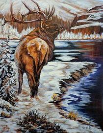 Winter von Susan Bergstrom