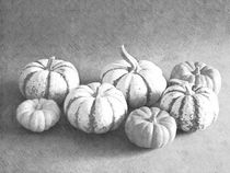 Fotosketcher-gourds