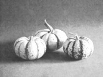 Fotosketcher-three-gourds